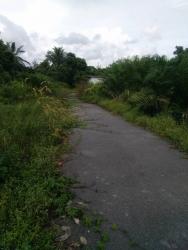 Tanah Pertanian di Lakai for Sale